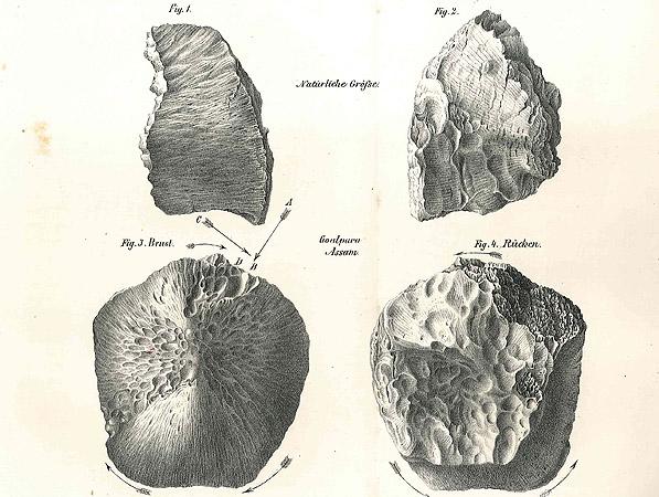 Meteoritica