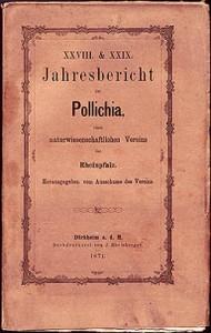 Kraehenberg Meteorite, Pollichia